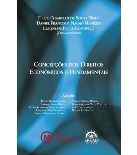 Concepções dos Direitos Econômicos e Fundamentais