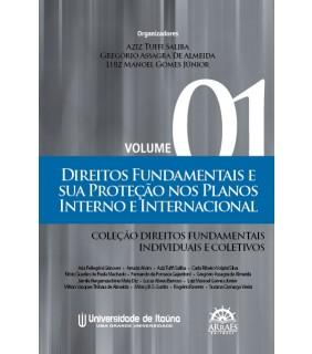 Direitos Fundamentais e Sua Proteção nos Planos Interno e Internacional - Vol.1
