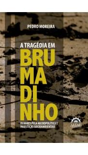 A TRAGÉDIA EM BRUMADINHO