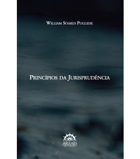 PRINCÍPIOS DA JURISIPRUDÊNCIA